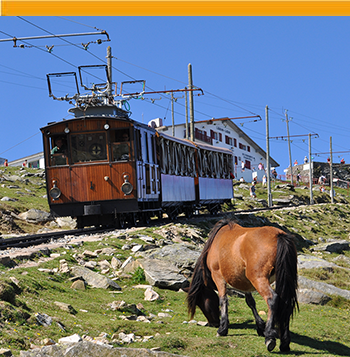 Train and horse at La Rhune
