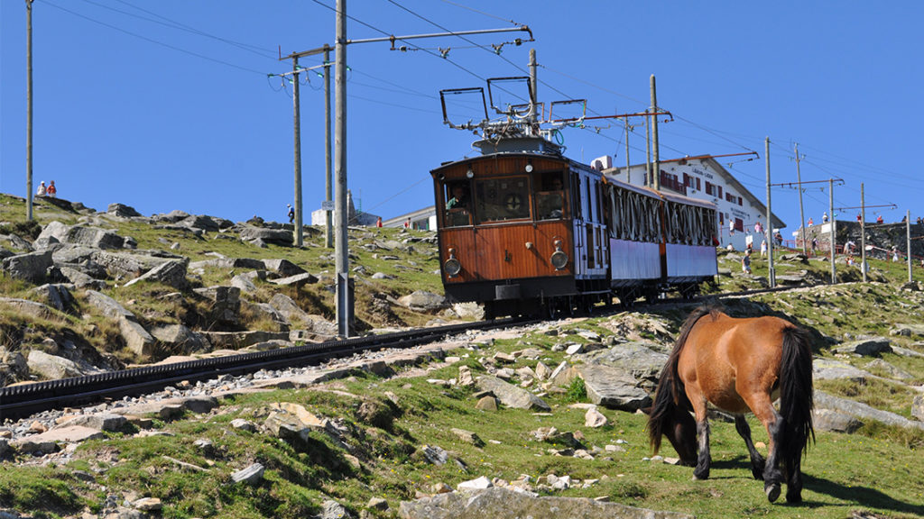 Train of the La Rhune Mountain