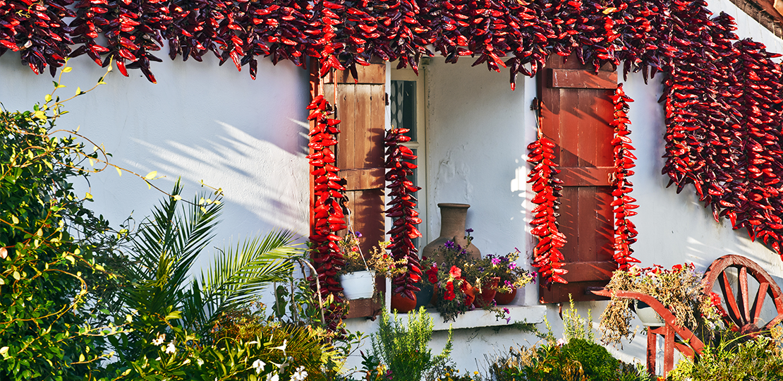Window full of chilli peppers in Espelette