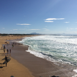 surfers on anglet beach